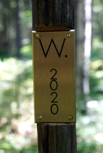 A metal plaque attached to a wooden pole in a forest shows the text W 2020.