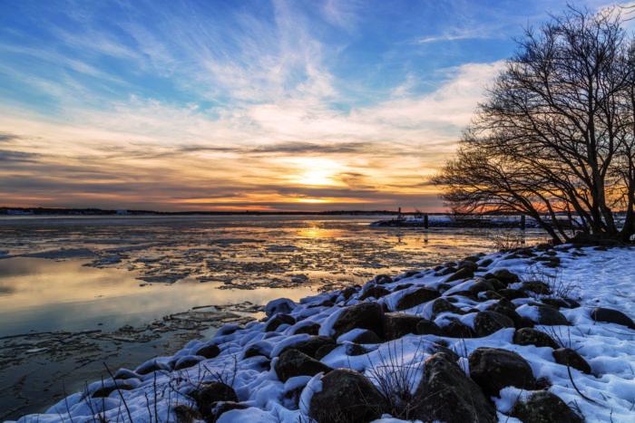 Закат в Хельсинки. Вид на море: камни, море, небо. Справа дерево. Снег на камнях.