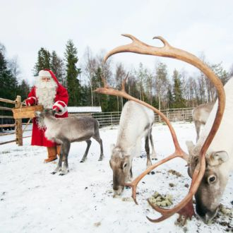 A reindeer with large antlers eats lichen from the snowy ground while Santa Claus stands with a couple other reindeer in the background.