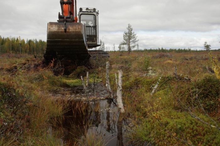 Экскаватор у полной воды канавы в ландшафте с редкими деревьями.