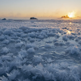 Geometric ice crystals poke up from the ice-covered sea that stretches to a sunset on the horizon.