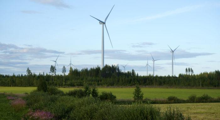Media docena de turbinas eólicas sobresalen por encima de los árboles en un paisaje de prados y bosque.