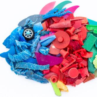 قطع بلاستيكية متعددة الألوان مرتبة على شكل سمكة.