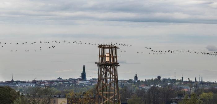 Im Vordergrund steht ein aus Brettern gebauter Turm, im Hintergrund ist die Skyline von Helsinki zu sehen.