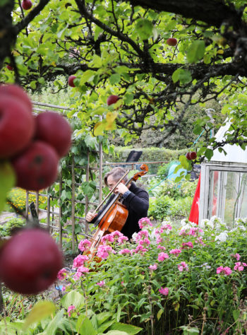 A man plays a cello in a garden among flowers and apple trees.
